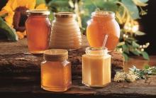 Date Honey / Jujube Honey