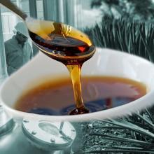 Organic Salmiana Agave Syrup