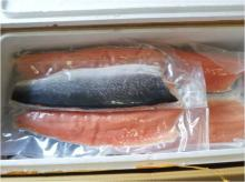 Frozen Atlantic Norwegian Salmon fillet