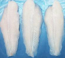 Frozen Pangasius Fillets