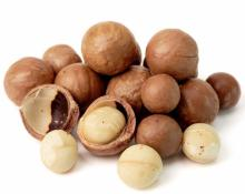 High quality macadamia nuts