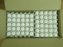 Chicken eggs white