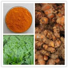 Natural  Pigment   Curcumin