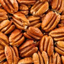 quality pecan nut