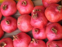 Best Grade Fresh Pomegranates