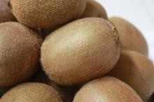 Fresh kiwi fruit for wholesale high quality kiwi