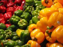 Whole sale high quality fresh sweet capsicum organic bell pepper
