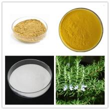 Rosemary Extract  Ursolic   Acid  , Carnosic  Acid  , Rosmarinic  Acid
