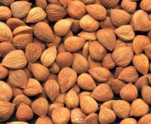 Grade A Apricot Kernels