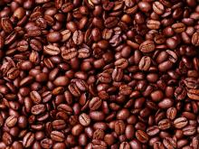 Coffee Bean in Arabica Coffee Bean