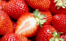 Fresh sweety strawberry