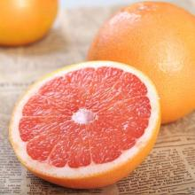 Egyptian fresh grapefruit