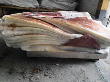 Frozen Giant Squid Wing