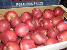 Fresh red apples from Greece. fantastic fresh apples red delicius from central greece.