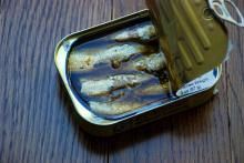 Best Canned Sardine in Vegetable Oil and Salt Product