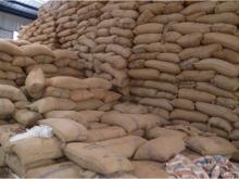 RAW CASHEW NUTS TANZANIA