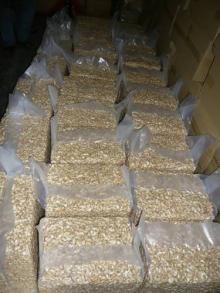 Cashew Nuts (W240,W320,W450)