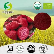 GMP factory provide natural Beet Root betanin beetroot extract powder