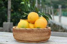 Where is the navel orange wholesale base