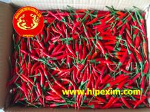 Red chilli in loose pack