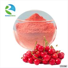 100% Natural Rich VC Acerola Cherry Extract Powder