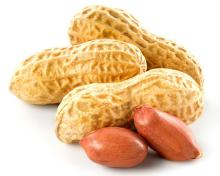 High Quality Red skin peanut ,peanuts