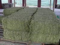 Купите питательное сено Альфафа сейчас в наличии высококачественный корм для животных дешевая цена