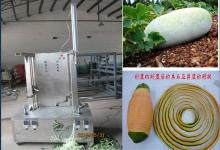 Stainless steel vegetable and fruit pumpkin peeling machine