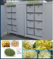 high yield mung bean sprout growing machine
