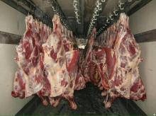 Halal Boneless Buffalo Meat