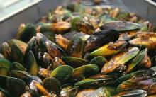 Live and Frozen Green Mussel CHEAP PRICE !!!1200USD per metric ton Whats-app #:+66 617//457//704
