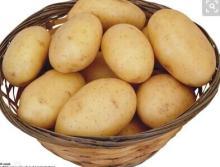 The top fresh potatoes