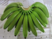 Зеленый Банан Кавендиш