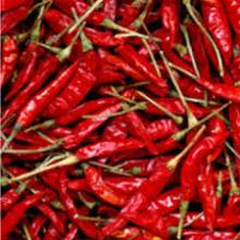 Supply 2015 Dried Red Whole Paprika