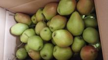 fragrant pear