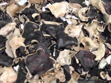 Dried Black Fungus White Back mushroom