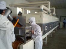 continuous spices/seasonings dryer sterilizer with CE