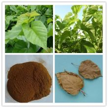 Competetive Price Mulberry Extract Fine Powder by Chinese Supplier