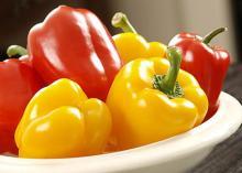 Capsicum/ Bell Pepper