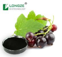 Black  Currant  (Ribes nigrum L.) Extract   Powder  Anthocyanidins 25%