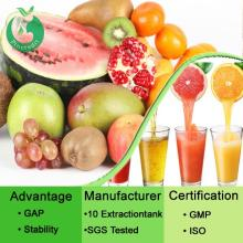 Fruit Juice Powder/Fruit Powder/Organic Freeze Dried Fruits Powder