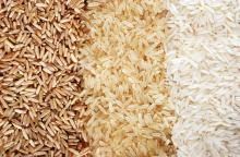 white,Ddgs,Basmati,Parboiled,Masoori,Brown,Ponni Rice
