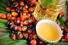 PALM FATTY ACIDS OIL