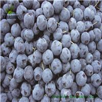 Chinese frozen blueberry