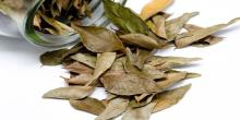Bay Leaf and Bay Leaf Powder