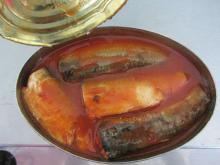 Canned sardines in oil/brine/tomato sauce