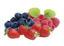 Industrial Blueberry/Strawberry Beverage Processing Line