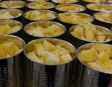 Canned Pineapple - Queen