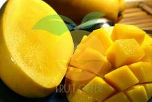 GOOD PRICE FOR IQF MANGO HALF-CUT FROM VIETNAM
