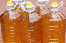 Crude Jatropha Oil